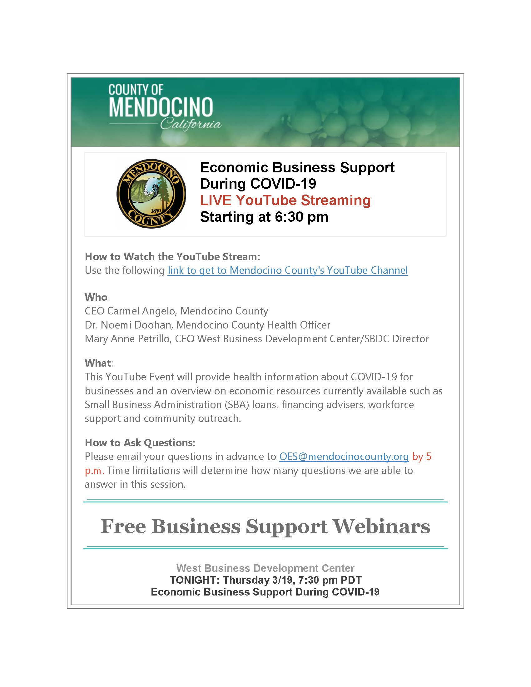 Economic Business Support During COVID_Page_1